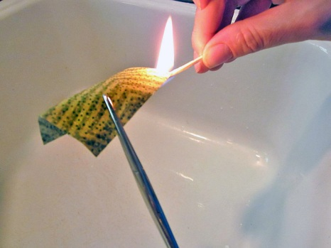 Burn Test from sew4home