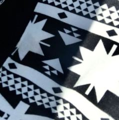 Day 11 Black & White close up